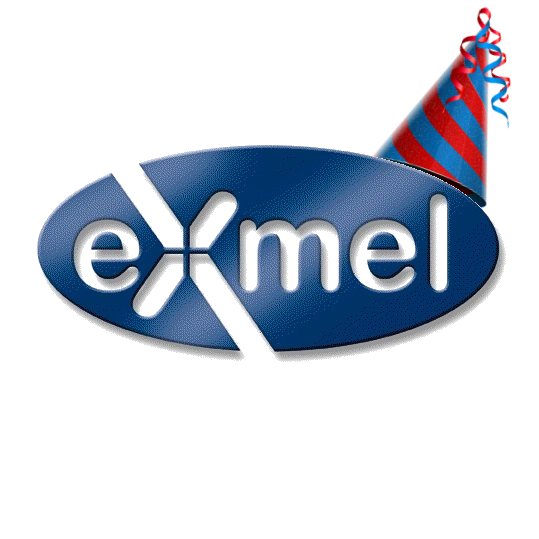 Exmel Solutions Limited turns 12 years old